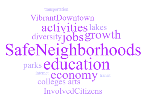Continuing Priorities Word Cloud: transportation, vibrant downtown, activities, lakes, diversity, jobs, growth, safe neighborhoods, parks, education, internet, economy, transit, colleges, arts, involved cititzens.