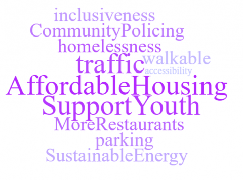 New Priorities Word Cloud: inclusiveness, Community Policing, homelessness, traffic, walkable, accessibility, affordable housing, support youth, more restaurants, parking, sustainable energy.